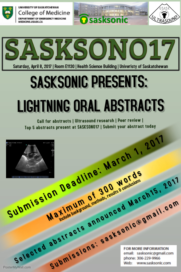 Call for Abstracts SASKSONO17.jpeg