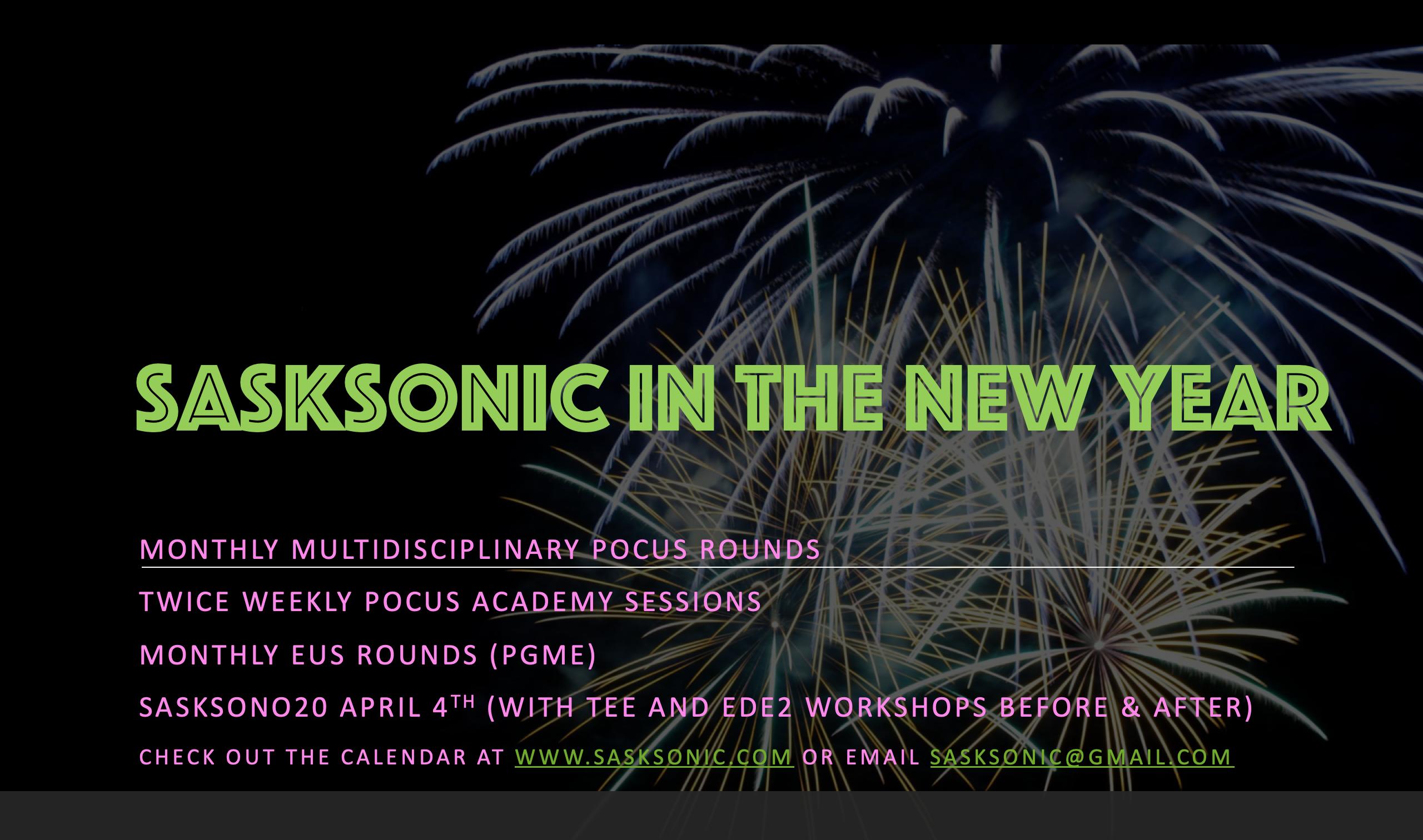 sasksonic2020.png